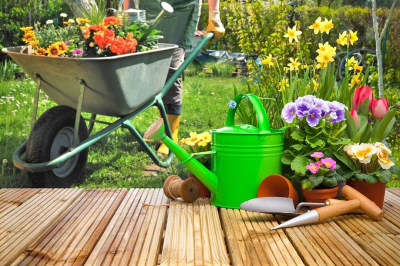 Ako ušetriť pri vybudovaní záhradky